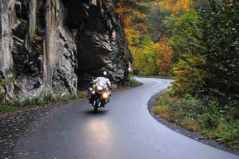 tracy-novacich-autumn-twisties-11